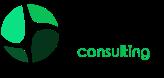 DigitUp Consulting Logo